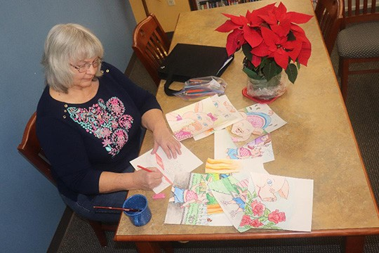 """DRAWING FROM FAMILY EXPERIENCES, Warsaw resident Janet Adams has released her latest children's work titled """"Sally The Cow."""" The book is available at the Warsaw library where Adams recently worked on sketches."""