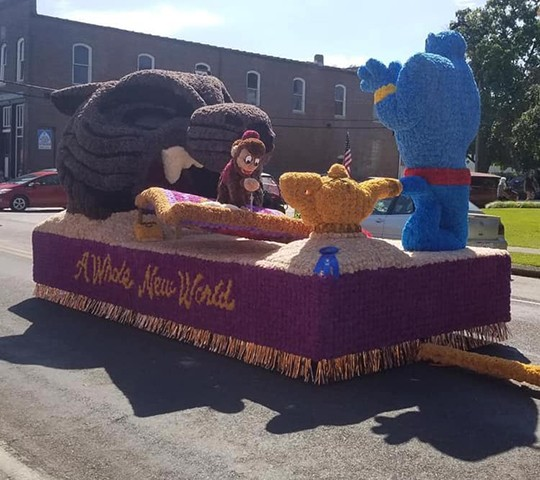 """TAKING THE TOP spot at the Cole Camp Fair was  """"A Whole New World"""" themed float, sponsored by the Cole Camp High Class of 2020."""