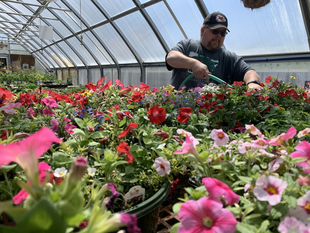 GIVING THE COMMUNITY something to do, Warsaw FFA members will hold their annual plant sale on May 2 as a drive thru. FFA advisor Stan Adler has been busy preparing plants to be sold at the WHS greenhouse.